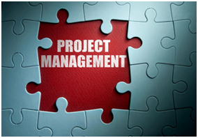 project management puzzle